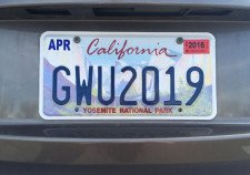 License Plates Laws